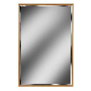 Gold Framed Rectangular Mirror